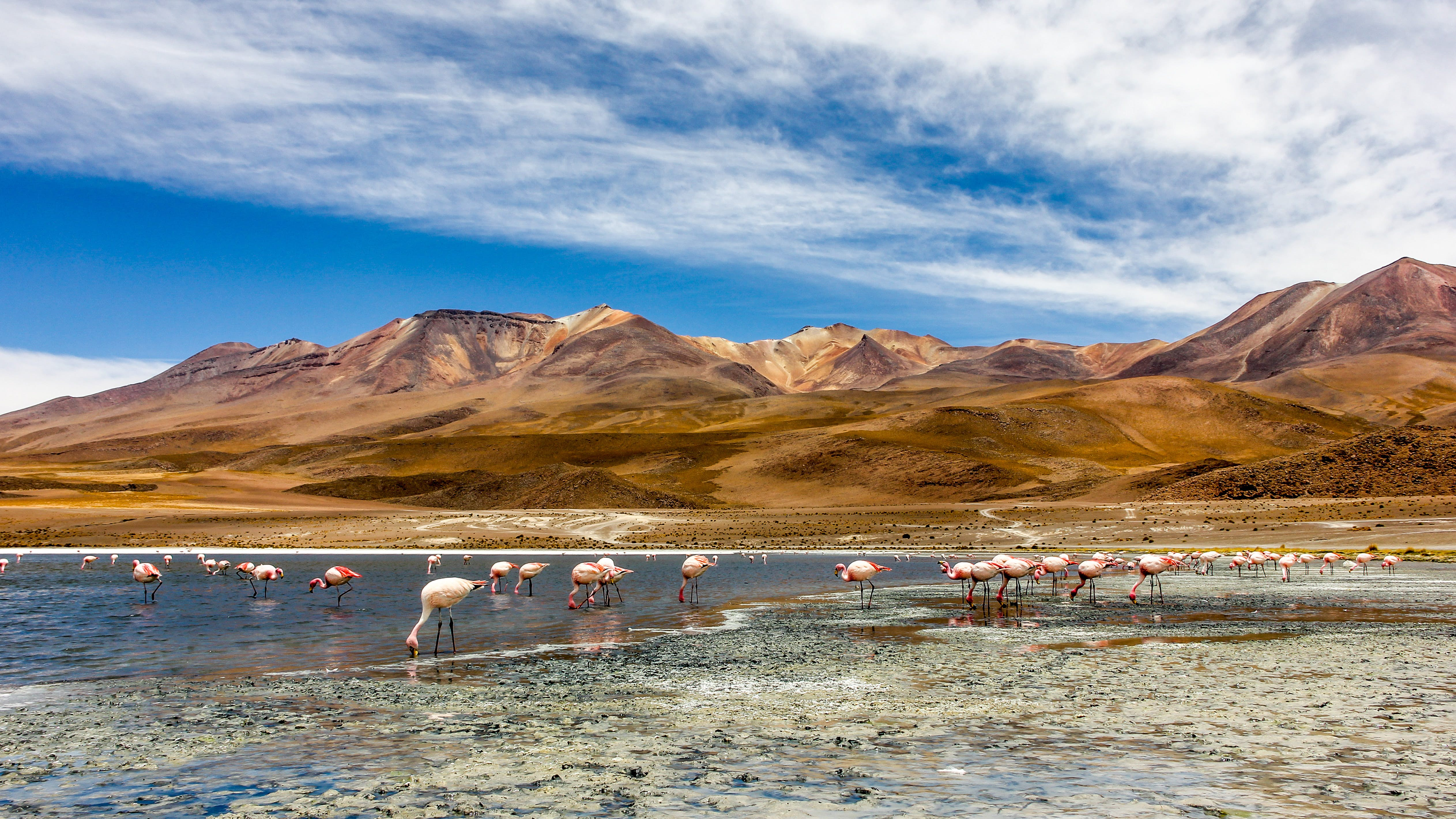Bolivia Travel South America Lonely Planet
