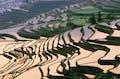 Yuanyang Rice Terraces null