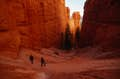 Bryce Canyon National Park null