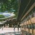 500px Photo ID: 161949041 - Meiji Shrine, Shibuya district, Tokyo.