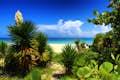 Varadero is a verdant paradise