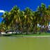 Beautiful view of a small island with royal palm trees in the park; Shutterstock ID 145453015; Your name (First / Last): Josh Vogel; GL account no.: 56530; Netsuite department name: Online Design; Full Product or Project name including edition: Digital Content/Sights