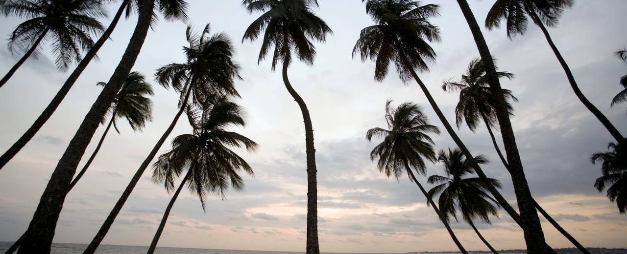Liberia Travel Africa Lonely Planet