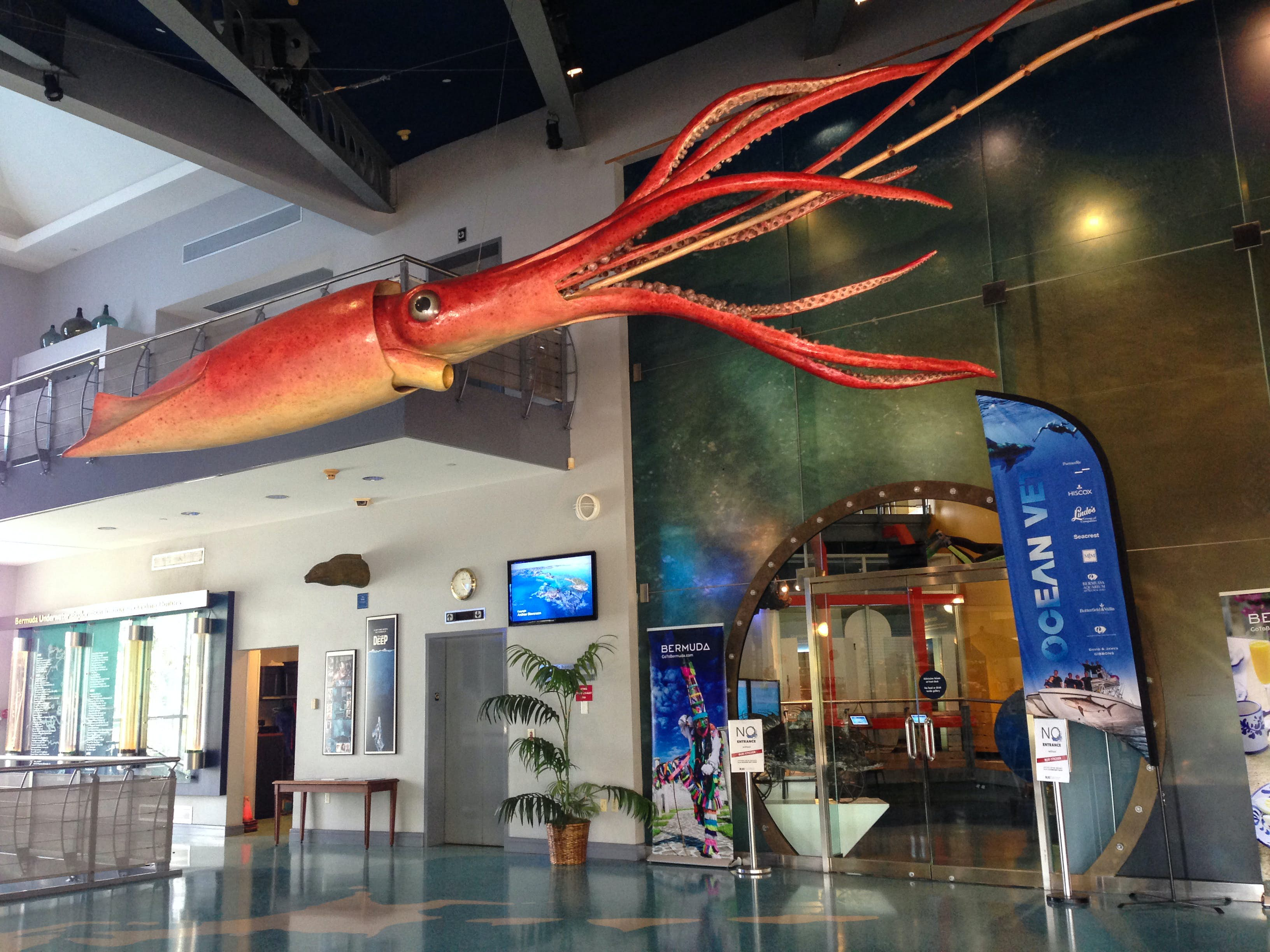 Bermuda Underwater Exploration Institute (BUEI)   Pembroke Parish ...