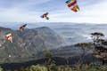 Adam's Peak (Sri Pada) null