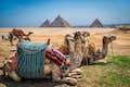 Africa is historic treasures