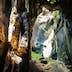 Gomantong Caves Beauty - Borneo Sabah Malaysia