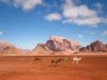 Southern Jordan null