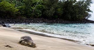 Keʻe Beach