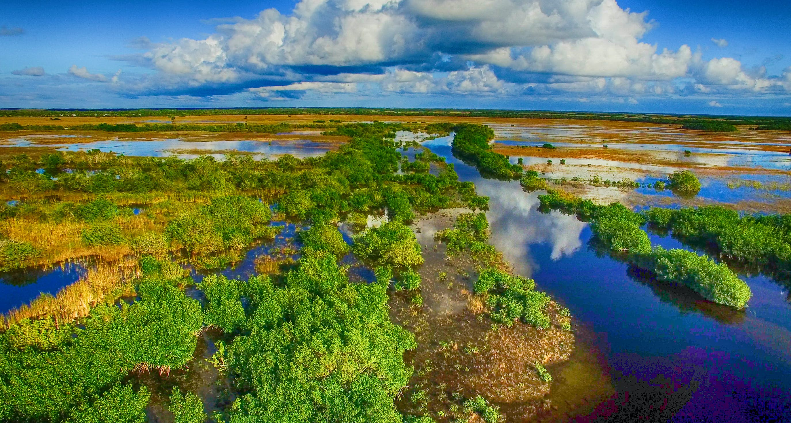 The Everglades Travel Florida Usa Lonely Planet