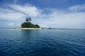 Papua New Guinea & Solomon Islands null