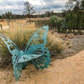 Lady Bird Johnson Wildflower Center