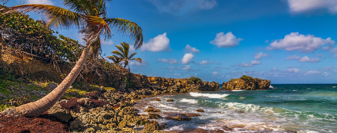 Jamaica Travel Caribbean Lonely Planet