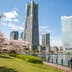 Landmark tower and Queens tower with Sakura shot on 12-April-2017; Shutterstock ID 644150710; Your name (First / Last): Laura Crawford; GL account no.: 65050; Netsuite department name: Online Editorial; Full Product or Project name including edition: BiA: Takayama, south of Tokyo POI images for online