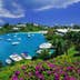 Bermuda, Tucker's Town, flowers above Tucker's Town Bay, elevated view