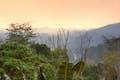 Parc National Ranomafana null