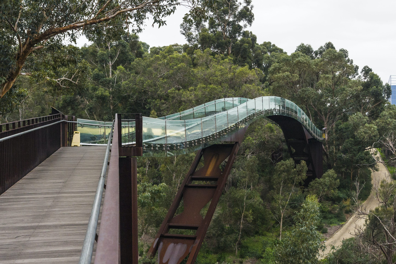 Kings Park & Botanic Garden | Perth, Australia Attractions - Lonely Planet