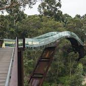 Kings Park & Botanic Garden
