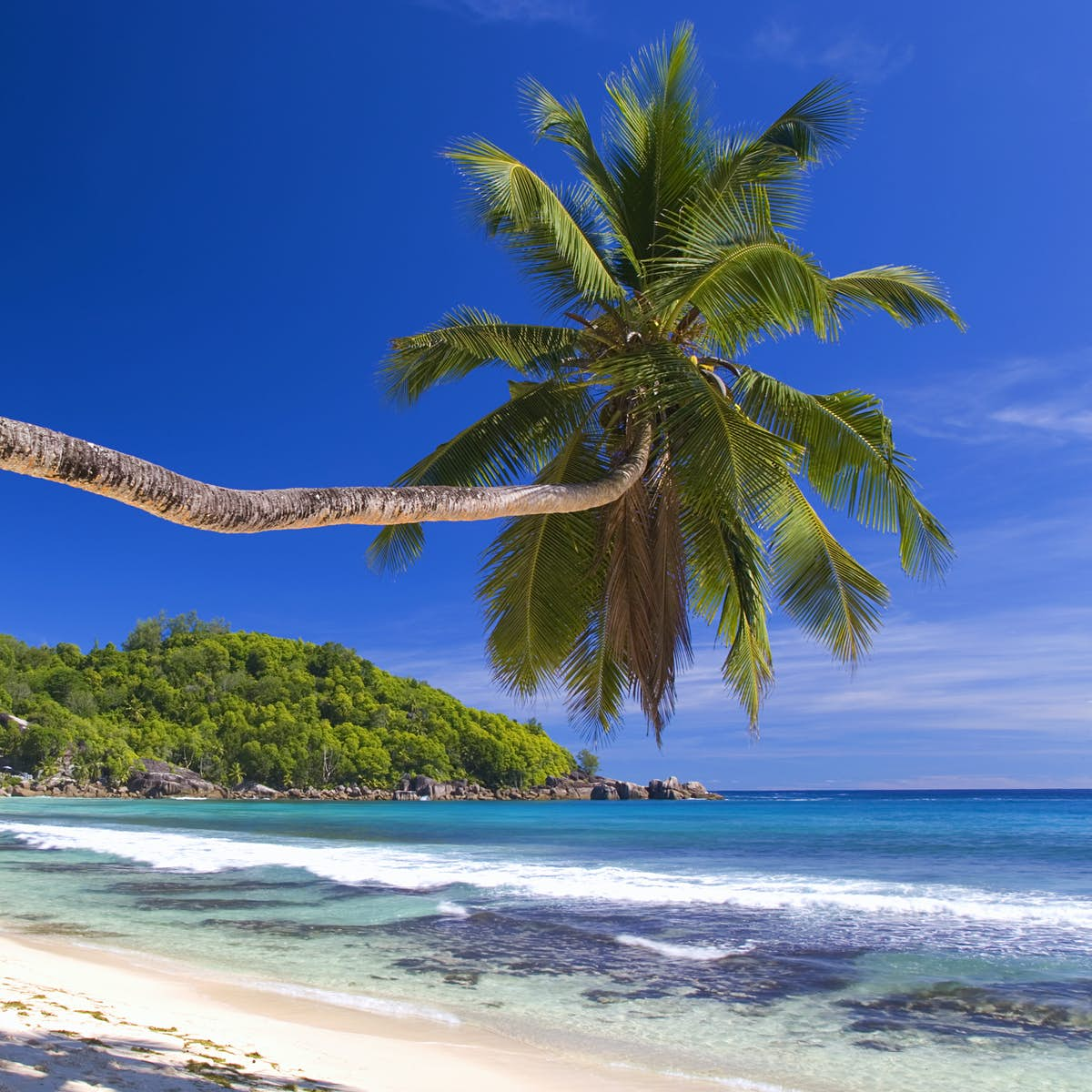 Seychelles Attractions - Lonely Planet