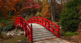 Sarah P Duke Gardens