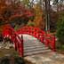 Iris Bridge (Ayamebashi), Sarah P. Duke Gardens, Duke University, North Carolina.