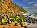 Norfolk Island is rocky beaches covered in lichen