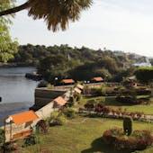 Aswan Botanical Gardens