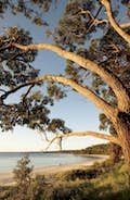 Jervis Bay null