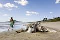Playa Grande null