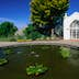 A greenhouse and a pond in Hamilton Gardens.