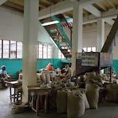 Nutmeg Processing Cooperative