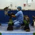 ABU DHABI, UNITED ARAB EMIRATES - FEBRUARY 03:  A falcon is placed on a bench at the Abu Dhabi Falcon Hospital, on February 3, 2015 in Abu Dhabi, United Arab Emirates. The Abu Dhabi Falcon Hospital (ADFH) is located just outside Abu Dhabi. It is the largest of its kind in the world attracting customers from all over the UAE and the wider Gulf region including Saudi Arabia, Qatar, Kuwait and Bahrain. Around 9,000 birds are treated each year for a wide range of ailments. The centre which has a an ophthalmology department, and intensive care unit is equipped to deal with everything from X-Rays, cases of Avian Flu, Falcon Pox, repairing of feathers, and general health checks and provides a 24 hour service. The centre also has two large air conditioned aviaries where falcons can rest while they are moulting, or changing their feathers. Traditionally a way of obtaining food, Falconry today has become more of a national sport and a rite of passage for many young Emirati men, who take their time to train their Falcons, developing a relationship and deep bond with the birds. Groups of friends regularly come together in the evenings to meet and train their birds where the practice becomes more about camaraderie and sharing knowledge than subsistence. The practice of Falconry was recognized by UNESCO in 2012 under the 'Intangible Cultural Heritage of Humanity' list.  (Photo by Dan Kitwood/Getty Images)