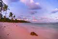 Nauru is island perfection