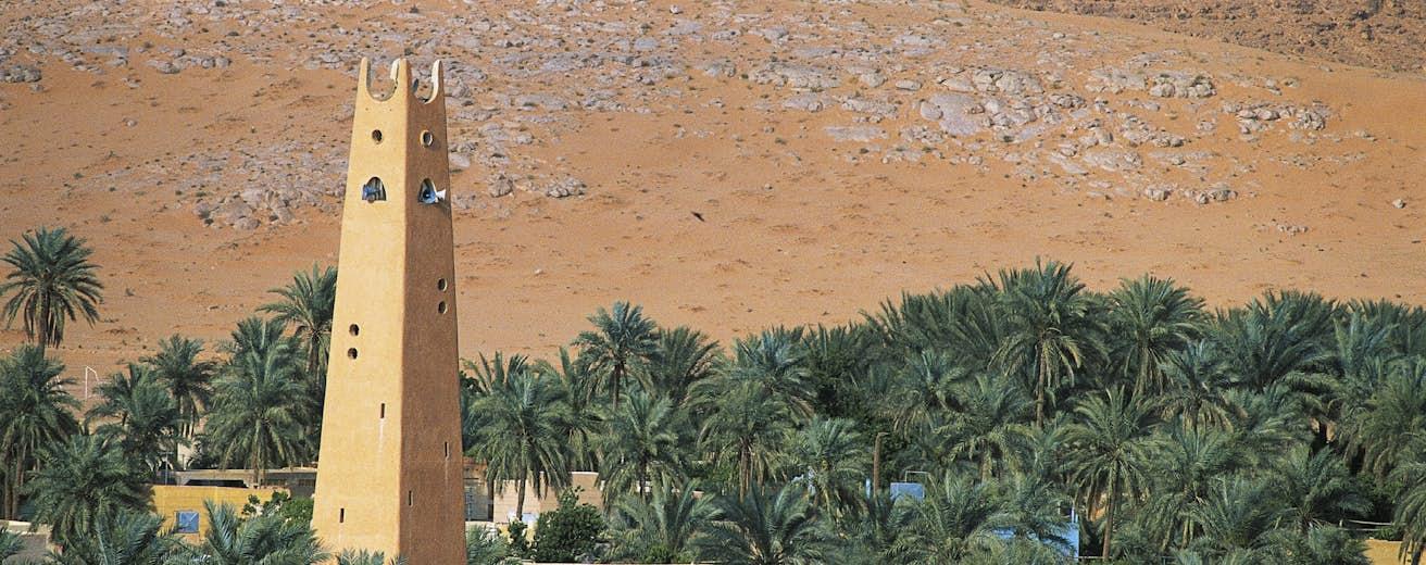 صورة لمنطقة غرداية الموجودة في الجزائر