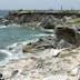 Iguanas at Punta Sur on Isla Mujeres, Quintana Roo