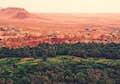 Ziz Valley & the Tafilalt null