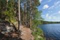 Saariselkä Wilderness & Urho Kekkonen National Park is magical forests