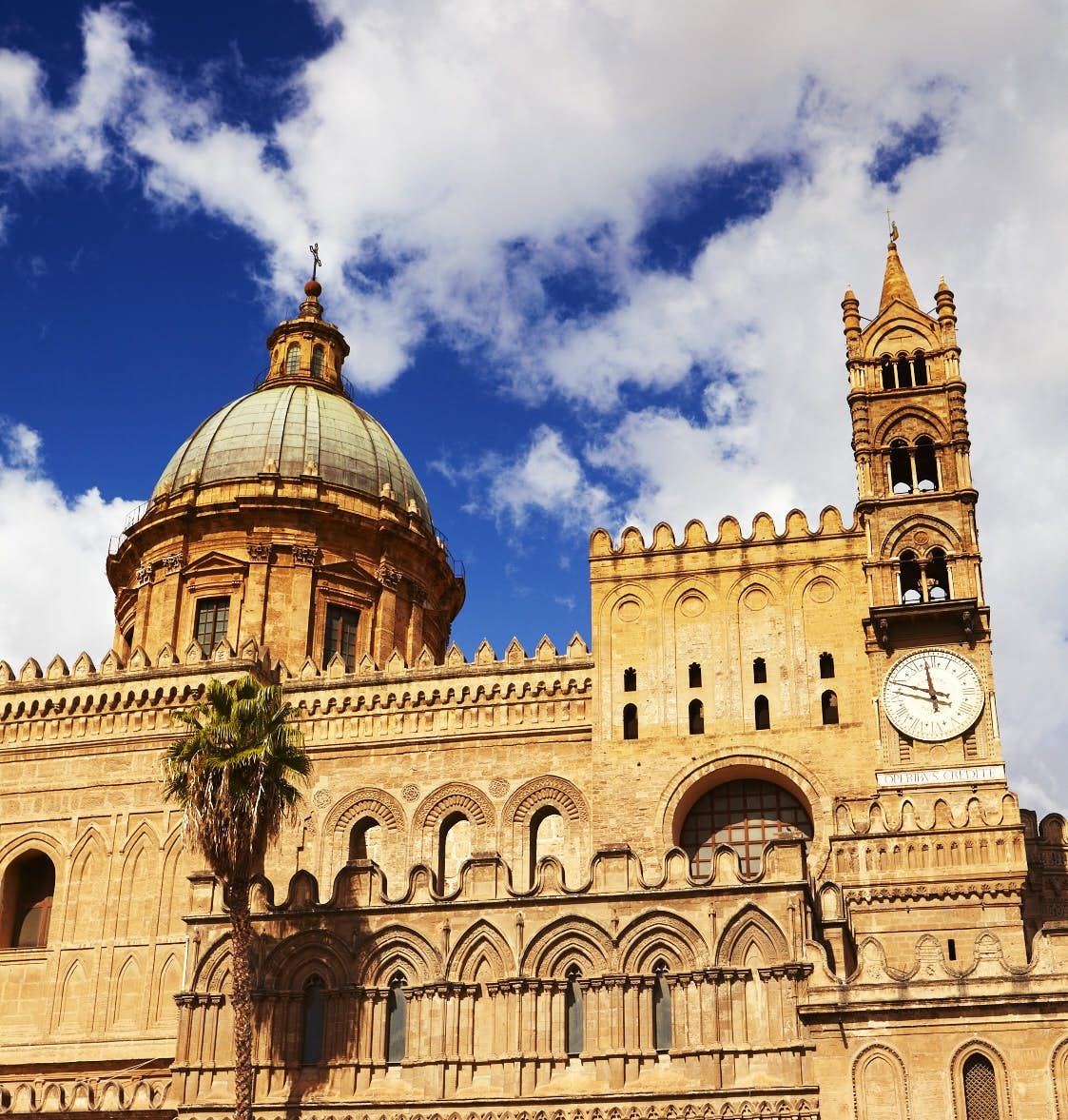 Studio La Rosa Palermo top things to do in palermo, italy - lonely planet