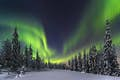 Fairbanks is the land of the Northern Lights