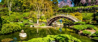 Huntington Library Art Collections Botanical Gardens Los Angeles Usa Attractions Lonely Planet