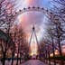 Valentine's Day Sunset at The London Eye, South Bank, London, England.