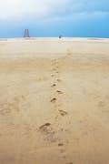 Praia do Forte null