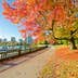 Colors of the autumn. Gorgeous sea walk in the park. Stanley Park in Vancouver. Canada.; Shutterstock ID 115945702; Your name (First / Last): Josh Vogel; Project no. or GL code: 56530; Network activity no. or Cost Centre: Online-Design; Product or Project: 65050/7529/Josh Vogel/LP.com Destination Galleries