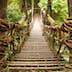 Kazurabashi vine bridge in Japan's Iya Valley