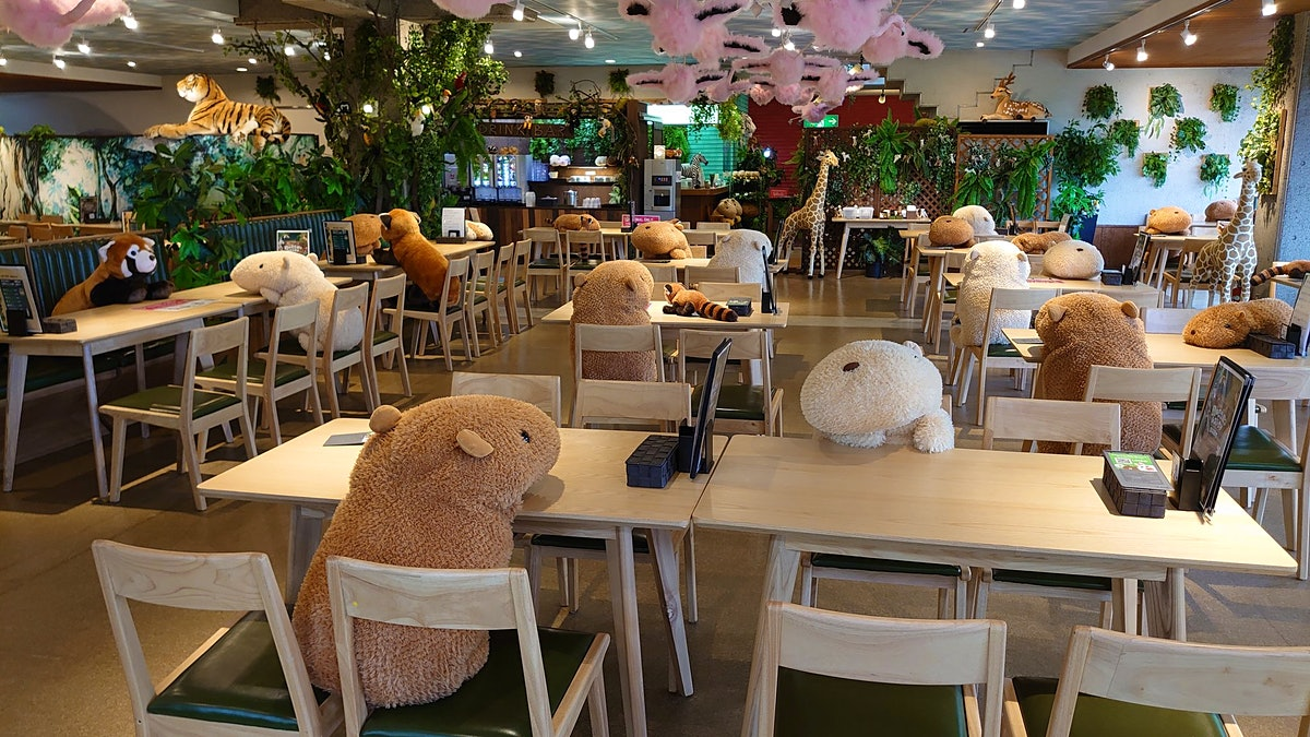 Japanese zoo employs stuffed animals to help with social distancing