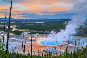 11 sustainable ways to experience Yellowstone National Park