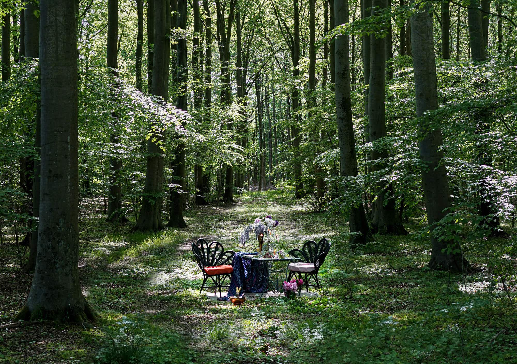At Nowhere, guests dine surrounded by the beauty of nature © Oddbird