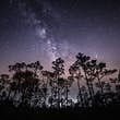 The Delta Aquariid meteor shower is officially active from about July 12 to August 23 each year © Diana Robinson Photography via Getty Images