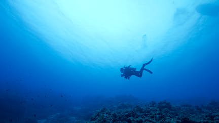 Archaeologists uncover 7000-year-old Aboriginal artefacts underwater