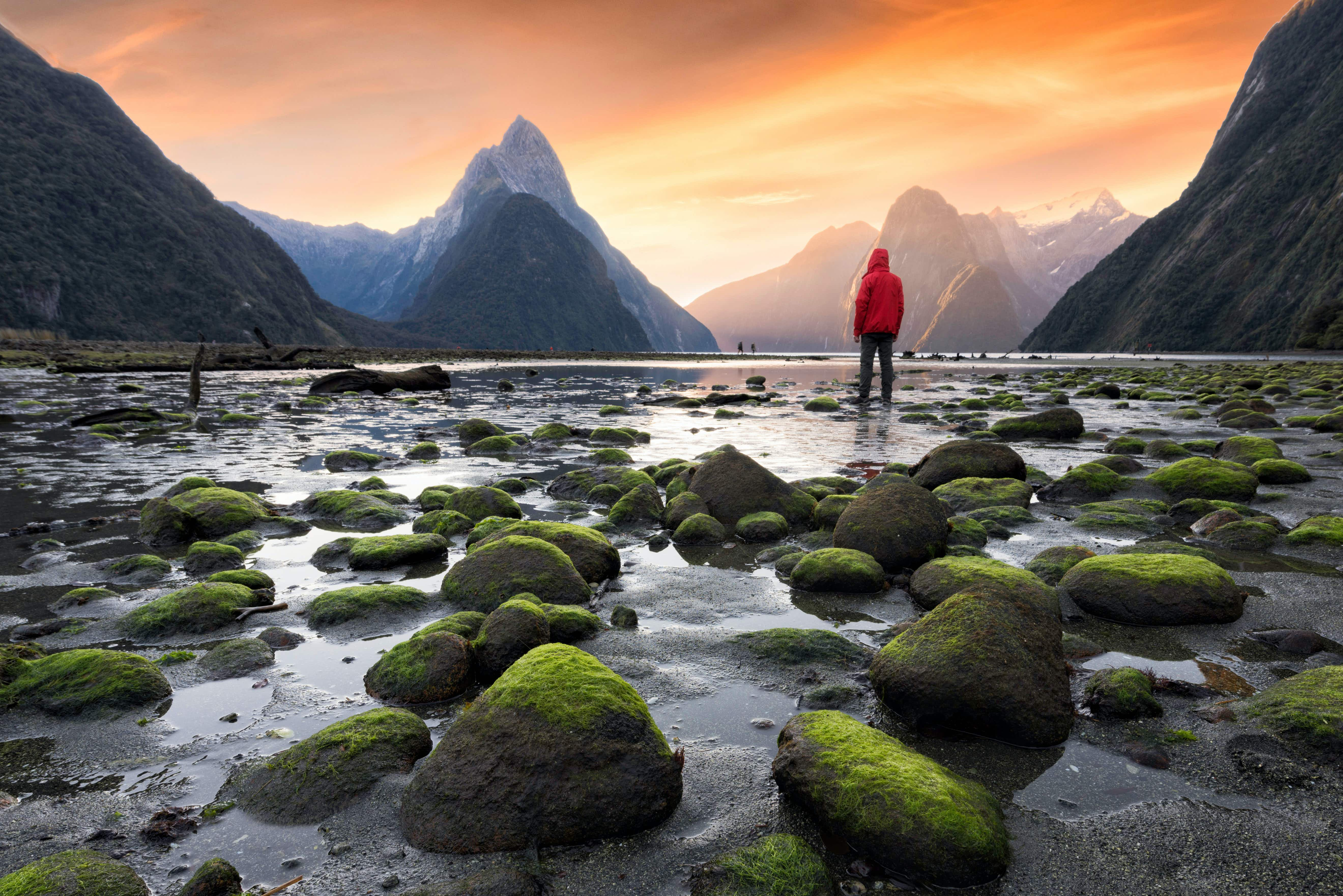 Milford Sound/Piopiotahi is a fiord in the south west of New Zealand's South Island